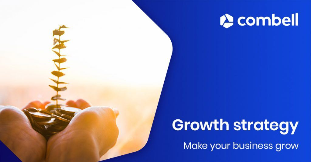 Growth strategy - how to make your business grow