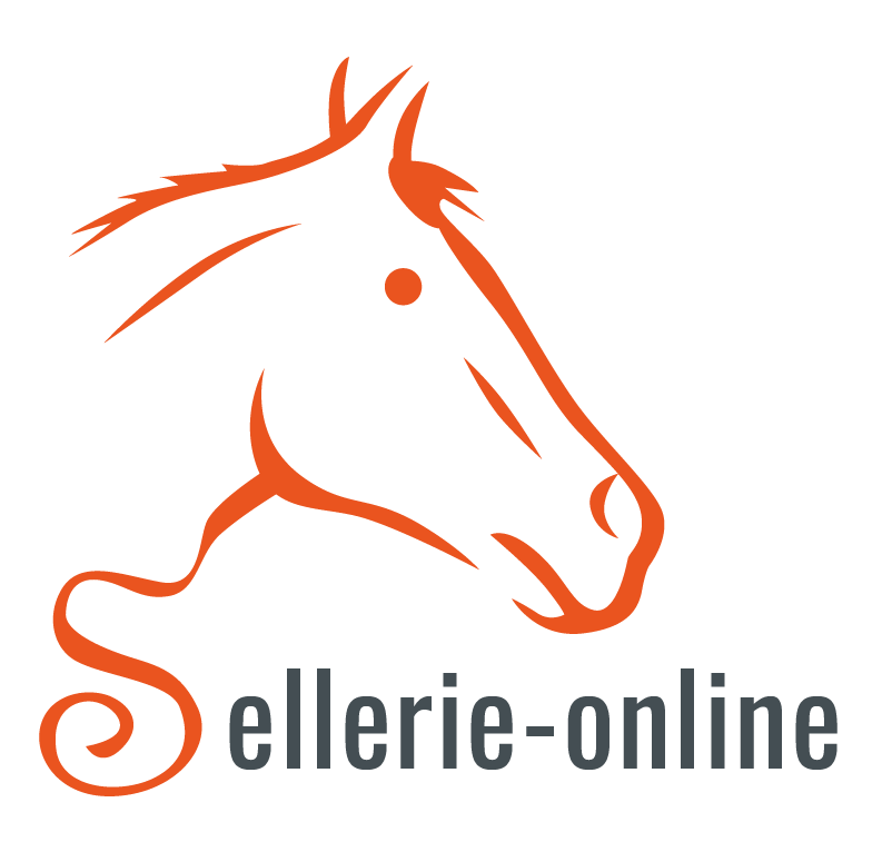 Sellerie-online testifies about gain in performance