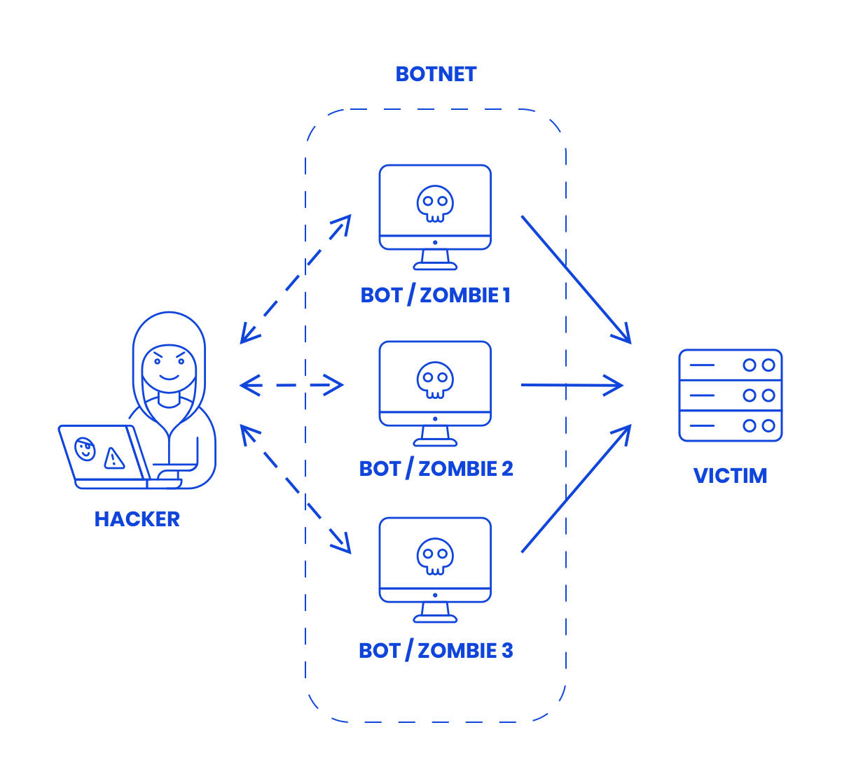 What is a ddos botnet