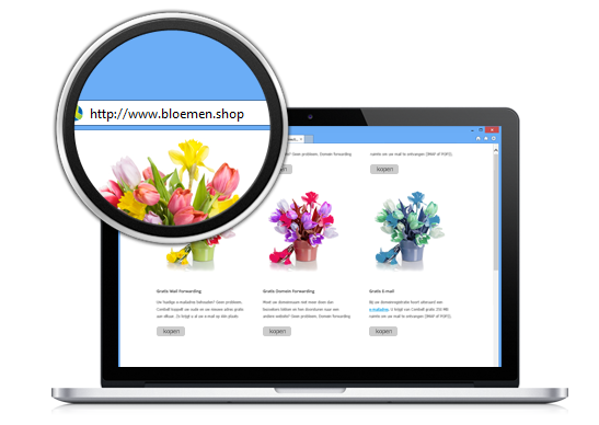New gTLD's vb bloemen.shop