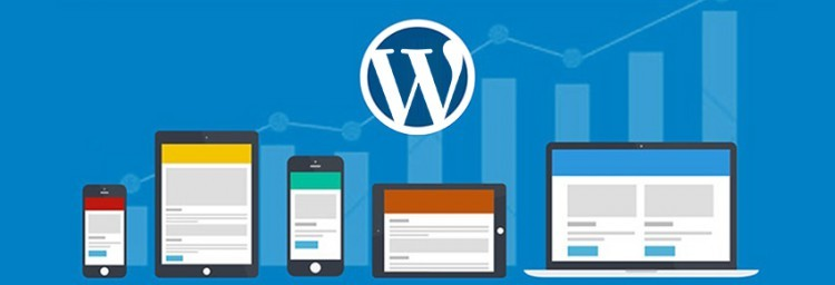 wordpress cms websites gebruik rankings
