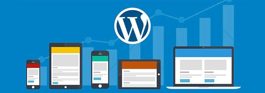 wordpress cms websites gebruik rankings