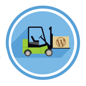 snellere wordpress website maken