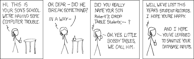 SQL injection cartoon