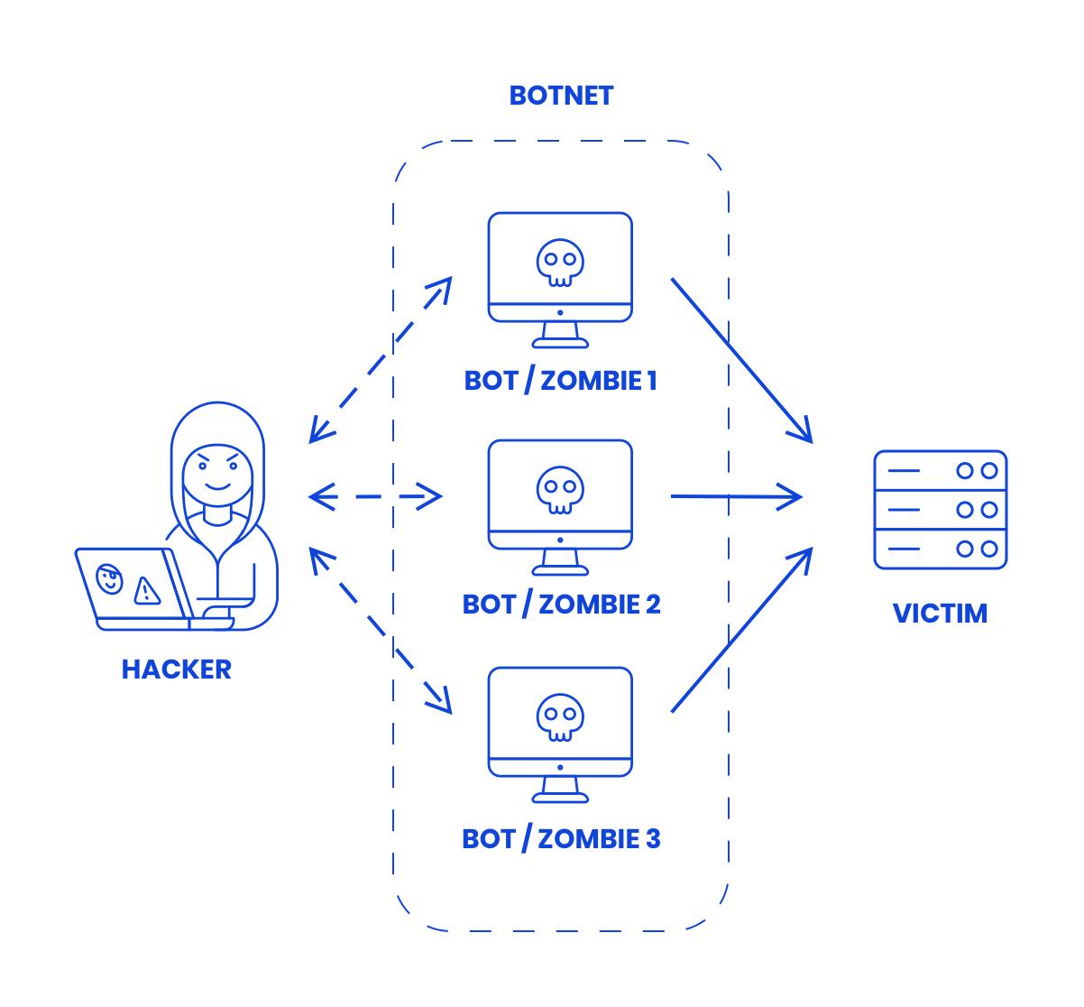 Wat is een ddos-botnet